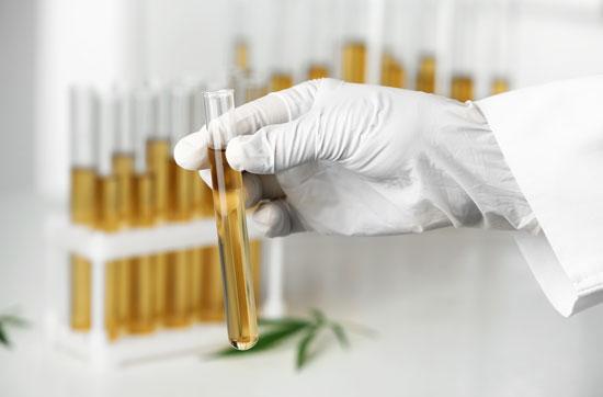 Singy's Premium CBD - The #1 CBD Oil You Can Trust 25