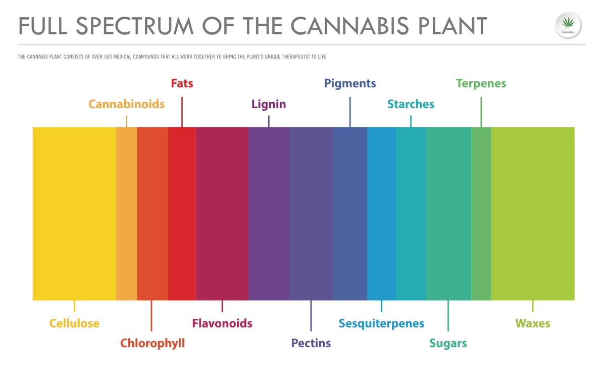 Full Spectrum of the cannabis plant